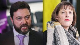 """""""Nestojí ani za znásilnění"""" Britský eurokandidát se odmítá omluvit za svá slova o poslankyni"""