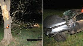 Smrt na Strakonicku: Řidič nezvládl řízení, ležel desítky metrů od auta