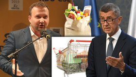 Exministr zemědělství Marian Jurečka (KDU-ČSL) a premiér Andrej Babiš (ANO)