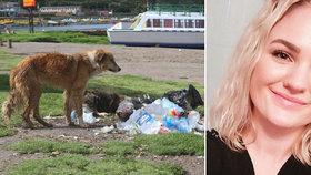 Norka zemřela na vzteklinu, nakazila se od psa na Filipínách.
