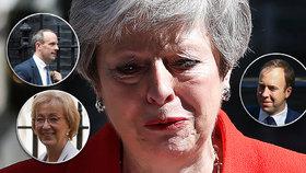 Zájem vést britské konzervativce vyjádřili další tři politici: Dominic Raab, Matt Hancock a Andrea Leadsomová.
