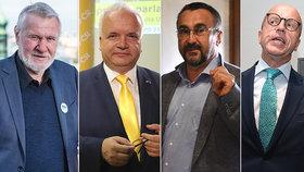 Tihle v Bruselu skončí: Europoslanci Štětina (ESO), Svoboda (KDU-ČSL), Poc (ČSSD) a Telička (Hlas) svá křesla neuhájili