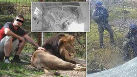 Expert ke krutému utrpení lvů na Vsetínsku: Policisté měli pálit vícekrát