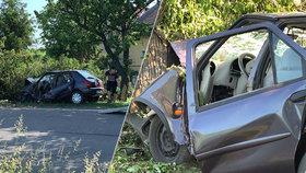 Žena na Berounsku narazila do stromu: Zemřela, zatímco auta jezdila kolem