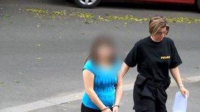 Mladá matka se policistům k vraždě dítěte přiznala.