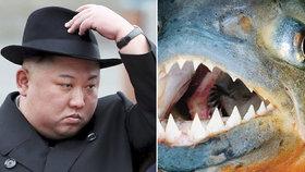 Nelítostný severokorejský diktátor Kim Čong-un: Inspirován bondovkou prý svého generála předhodil piraním!