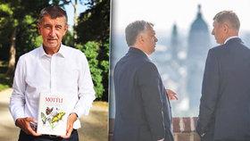 """Babiš na Jižní Moravě: """"Motýle"""" připomněla i jeho návštěva národní přírodní památky Pastvisko u Lednice. Poté se přesunul za Orbánem do Maďarska"""