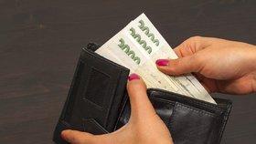 Čeští muži by na rodičovskou dovolenou chtěli, ale nemohou si to dovolit finančně