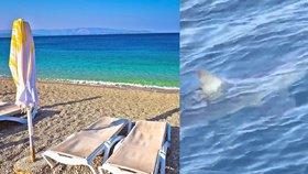 Chorvatsko láká v létě statisíce Čechů, letos by tu kromě žraloka mohl být i problém s obsluhou