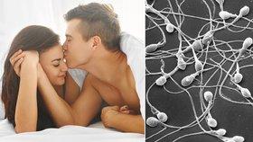 Na kvalitu spermií má podle vědců vliv i doba uložení ke spánku