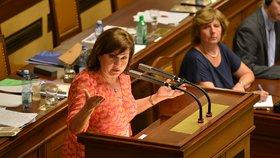 Ministryně financí Alena Schillerová (za ANO) často poslancům a poslankyním vysvětlovala jak nakládá s penězi ze státního rozpočtu. (26. 6. 2019).