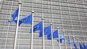 Do čela evropské komise bude nejspíše postavena ostřílená Němka Ursula von der Leyenová, nyní jí musí schválit evropský parlament
