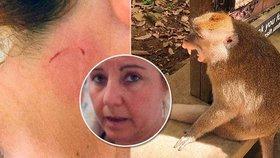 Pořádný kousanec zanechala opice na krku ženy, která přijela na dovolenou na Bali.