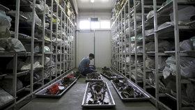 Nejvyšší nizozemský soud rozhodl, že stát se podílel na masakru ve Srebrenici (19. 7. 2019)