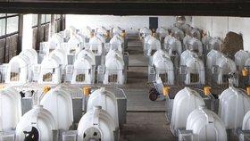 Chov telat na mléčných farmách v Polsku.