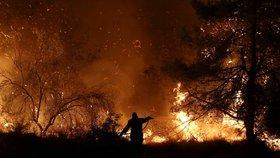 Řeckým hasičům se stále nepodařilo dostat pod kontrolu lesní požár v centrální části ostrova Euboia, kvůli kterému museli být evakuováni obyvatelé čtyř vesnic a také jeden klášter (14. 8. 2019)