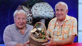 Josef Kadeřávek a Vladimír Štibinger (zleva) ze Sdružení houbařů Čelákovice i se svými úlovky byli hosty pořadu Epicentrum dne 15.8.2018.