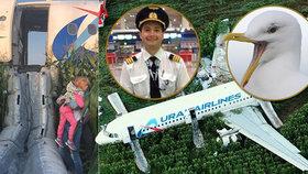 Airbus přistál v kukuřičném poli