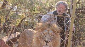 Lev rozsápal 70letého chovatele.