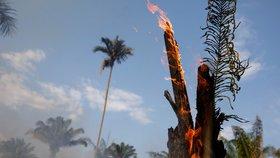 Amazonská džungle je v plamenech, následky sucha ničí tamní lesy.