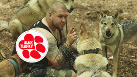"""Jakub Kocourek žije s hromadou """"vlků"""" a vyzývá lidi, aby více přispívali na útulky."""