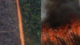 Požáry dál ničí Amazonii, dopad budou mít na tamní faunu a flóru. (29. 8. 2019)