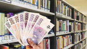 Knihovníci upozorňují na to, že jejich platové ohodnocení není dostačující.