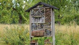 I takhle může vypadat hotel pro hmyz.