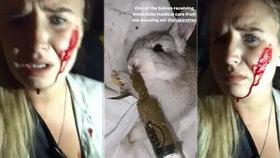 Mia jela na farmu, aby zachránila králíky. Kvůli následkům její akce jich ale farmáři prý museli nechat kolem stovky utratit.