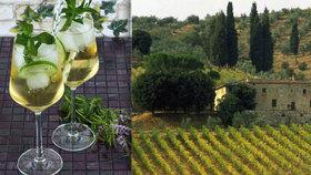Italští vinaři se bojí o prosecco