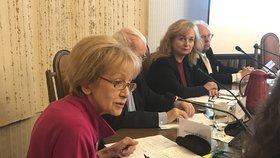 Helena Válková (ANO) míní, že se musí rozlišit i věk a zdravotní stav, když se řekne termín diskriminace.