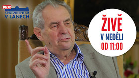 Zeman od 11 hodin živě: Prezident o abolici pro Babiše, daních i 17. listopadu