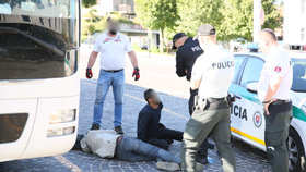 Český autobus dovezl na Slovensko dvojici migrantů.