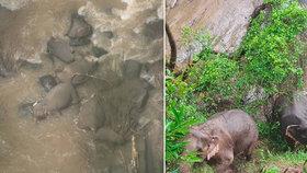 Stádo slonů chtělo zachránit mládě před pádem do vodopádů! Zahynuli všichni