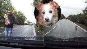 Dojemný dobrý skutek: Tom zachránil hluchou fenku z rušné silnice, kam se zaběhla.