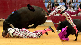 Toreador bojuje o život poté, co ho zmasakroval býk.