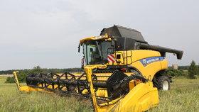 Sucho v severozápadních Čechách se minulý týden prohloubilo (ilustrační foto).