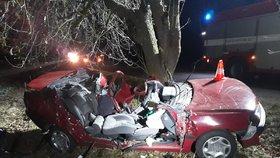 Řidič na Písecku nezvládl řízení, vyletěl ze silnice a narazil do stromu. Muž na místě zemřel