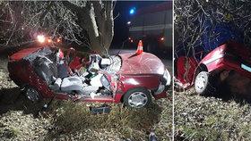 Na Písecku zahynul řidič. V zatáčce vyjel mimo silnici a narazil do stromu