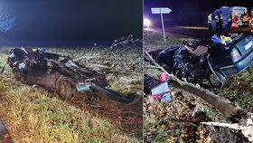 Smrtelná nehoda u Ovčár na Kolínsku