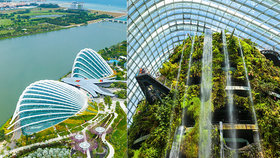 Park v roce 2018 navštívilo více než 50 milionů návštěvníků. Pokud se sem rozhodnete zavítat i vy, až na skleníky a visutou lávku mezi super stromy je všechno volně přístupné bez poplatků.