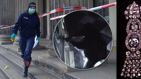 Zloději z Drážďan se trefili do černého, jeden z ukradených šperků má cenu téměř 270 milionů korun.
