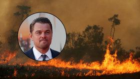Hlava Brazílie tvrdí, že DiCaprio přispívá k požárům v Amazonii