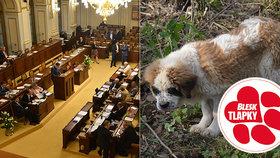 Množírny možná dostanou utrum, Sněmovna navrhla novelu zákona.