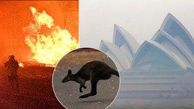 V Austrálii dál zuří požáry, plameny dorazily na hranici Sydney, velkoměsto halí hustý dým, (10.12.2019).