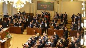 Sněmovna projednávala přísnější tresty za množírny, zůstala na půl cesty (18. 12. 2019)