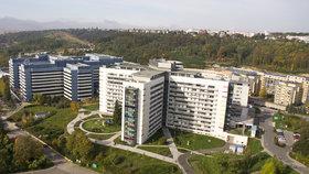 Takhle to vypadá v pražské Motolské nemocnici.