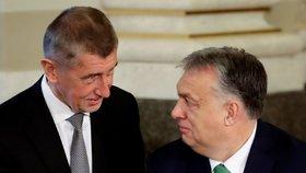 Český premiér Andrej Babiš s maďarským premiérem Viktorem Orbánem během summitu zemí Visegrádské skupiny (V4) a Rakouska v Národním muzeu v Praze. (16. 1. 2020)