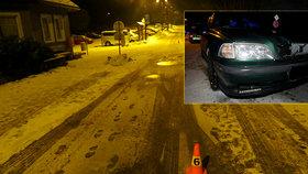Sáňkař vjel v noci pod auto.