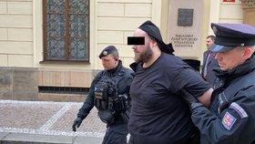Policisté u vchodu do poslanecké sněmovny, 30. ledna 2020